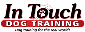 In Touch Dog Training. Dog Training for the real world.
